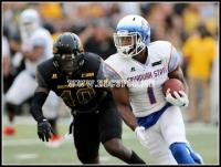 Savannah State Tigers lose to Southern Mississippi