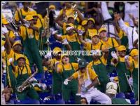 Kentucky State marching band jamming in the stands