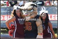 Bethune-Cookman Wildcat Mascot