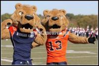 Morgan State University Bears Macots