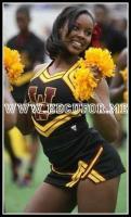 Bethune-Cookman Cheerleader