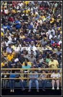 NCA&T fans