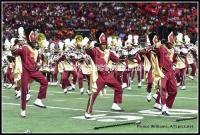 Bethune-Cookman Marching Wildcats at HOTB