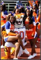 Savannah State Tigers Cheerleaders and Mascot